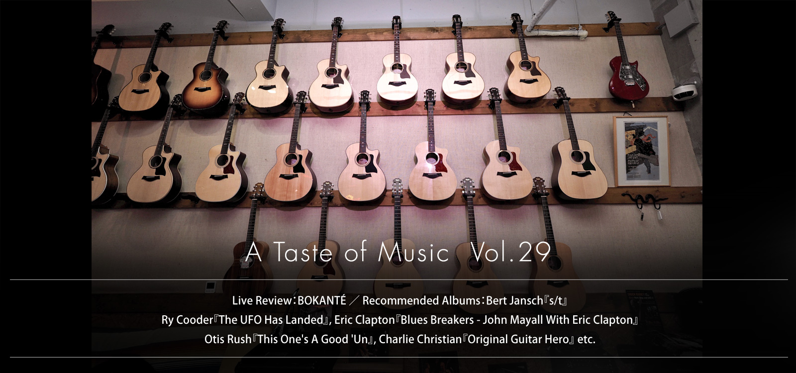 slider image A Taste of Music Vol.29